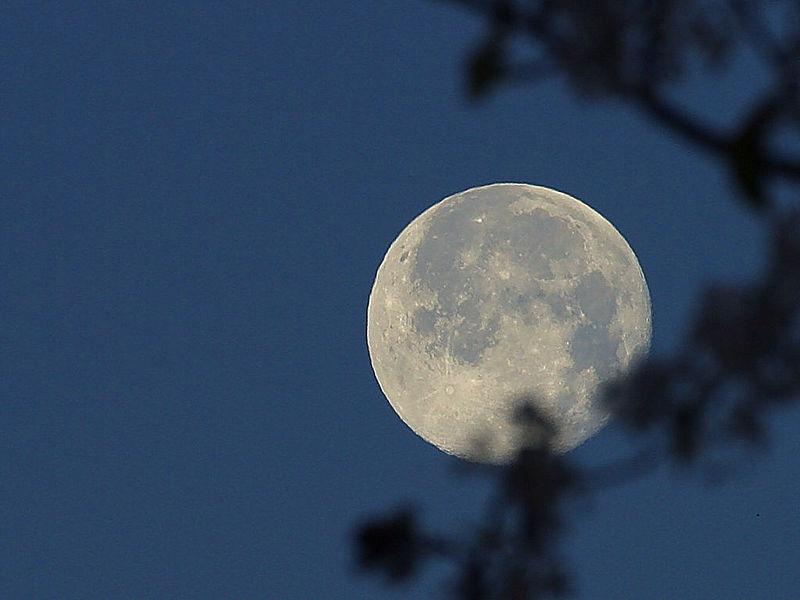 800px-Winter-moon
